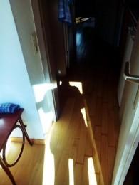 Der Schatten des Körpers der Stipendiatin, mit Socken